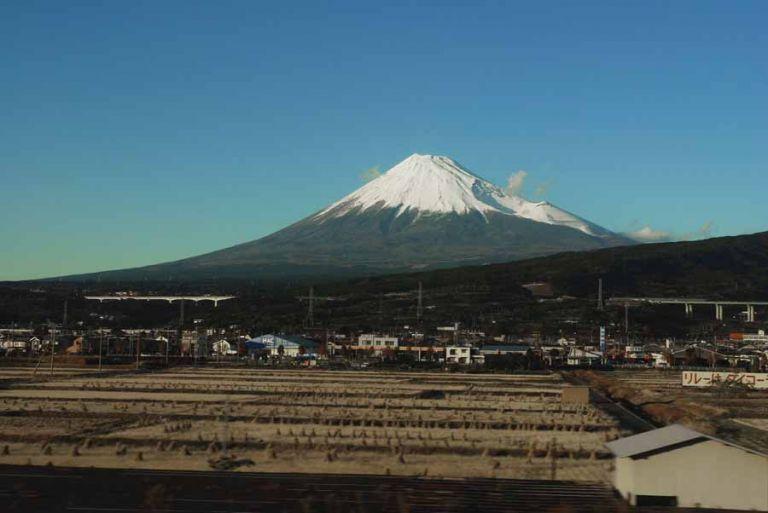 Fuji fields