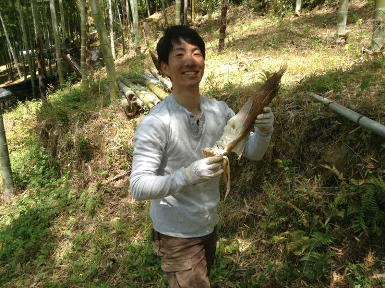 Takenoko (baby-bamboo)